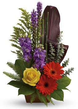 Description: Artfully yours. Impress that special someone with this natural sculpture featuring gerberas, roses, stock and ti leaves.