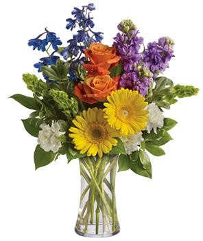 Description: Refresh the senses with the splendour of this colourful blend of gerberas, roses, stock, delphinium and Bells of Ireland in a vase.