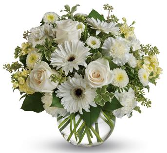 Description: Wondrous white roses, gerberas and carnations in a vase bring a breath of fresh air to your special someone.