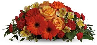Description: A sweet treat everyone will enjoy! Delight your special someone with this outstanding orange arrangement of gerberas, roses and alstroemeria.