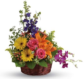 Description: Celebrate their greatness with this glorious rainbow of lilies, roses, gerberas, orchids and delphinium!