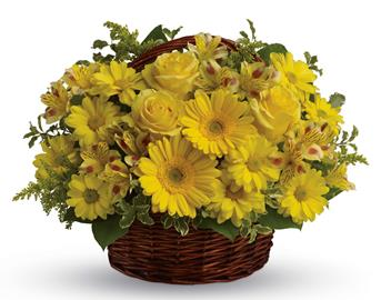 Description: They will be walking on sunshine after receiving this cheerful basket of roses, gerberas, alstroemeria and daisies!