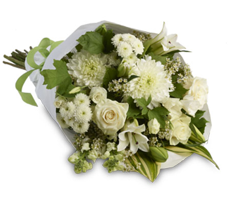Description: A simply stylish bouquet of all white flowers representing purity and innocence beautifully accented with seasonal green foliage