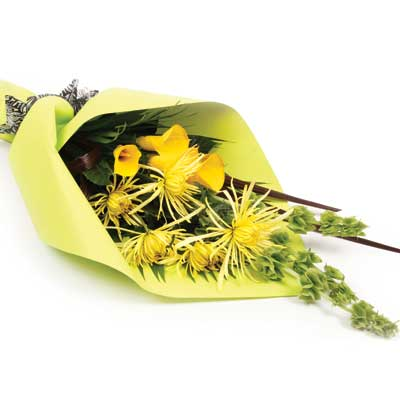Description: This bright bouquet will brighten up that special someones day.