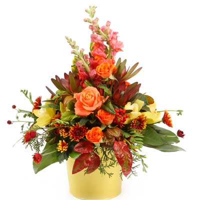 Description: This stunning bucket arrangement shines with bright colours and variety.