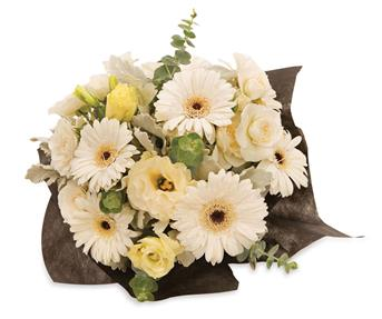 Description: An elegant arrangement of white gerberas, lisianthus and spray roses that will lighten up any room.