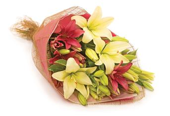 Description: An all-time devine favourite bouquet showcases a combination of long lasting coloured lilies.
