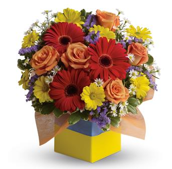 Description: You will want to put this colourful arrangement on your hit parade of gifts to send. Bold primary colours and a perfect mix of flowers make it great for everyone.