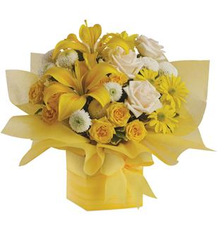 Description: As refreshing as lemon sherbet, this sunny array of flowers in a yellow gift box tied with a matching ribbon makes a perfect gift for someone with taste. They will certainly admire yours.
