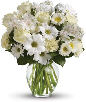 Description: For a gift of pure joy, send snowy white flowers in a classic clear glass vase. This lovely arrangement is perfect for just about any occasion, from birthday and anniversary to get well and new baby. They will adore it.