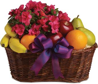 Description: Here is a tasteful gift for any occasion. Fruit and a flowering plant, what could be better than that?
