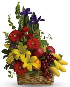 Description: A healthy gift for all the family! A fruit and flower combo of seasonal fruit and flowers.