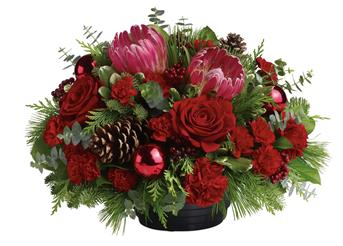 Description: All will be bright this season when you send this joyful rose and native Christmas arrangement. This gorgeous arrangement, will brighten up the festivities beautifully.