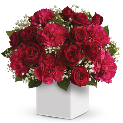 Description: Joyful red flowers presented in a white box make the perfect gift for Christmas.